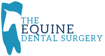 The Equine Dental Surgery